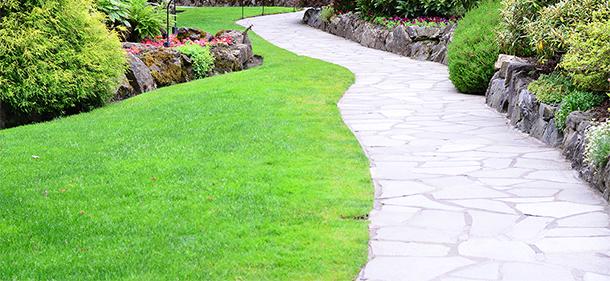 wilkinson sword gardening tools lawn care tips