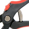 anvil-pruner-spring